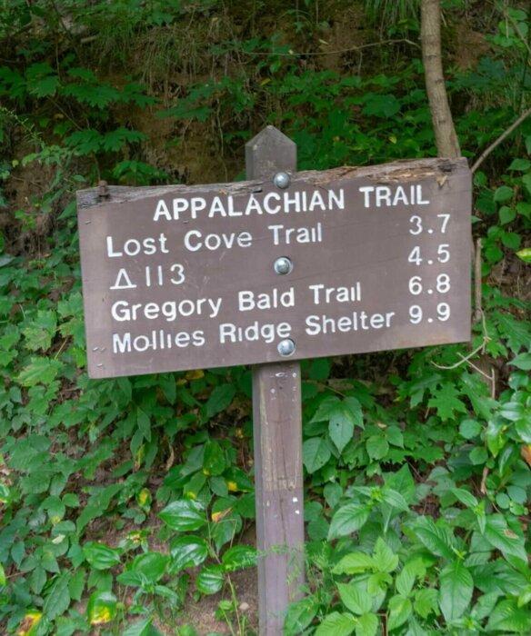 Lost Cove Trail sign